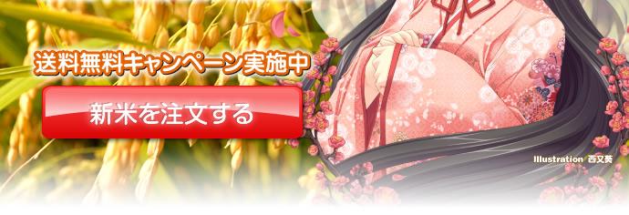 13_02komachi.jpg