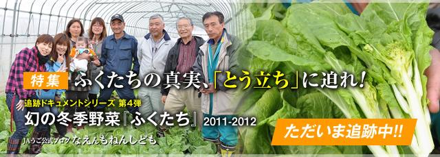 2011_fukutachi_bn.jpg