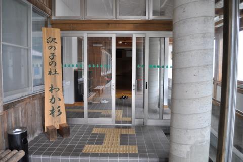 わか杉20101005.JPG