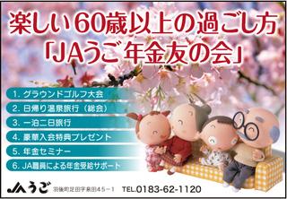 年金友の会新聞チラシ画像.jpg