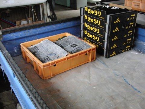 CIMG8052.JPG