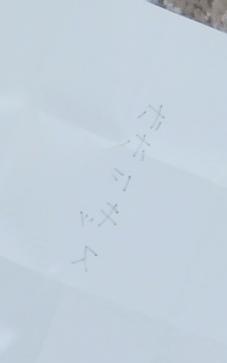 DSCF0762-2.JPG