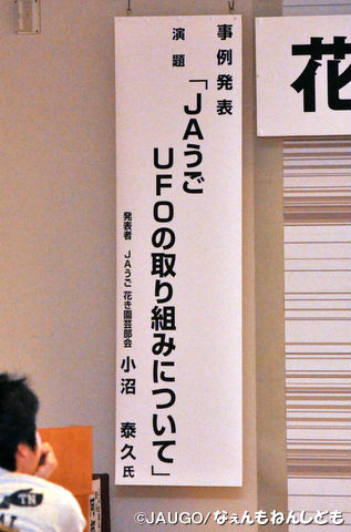 DSC_0049_copy.jpg
