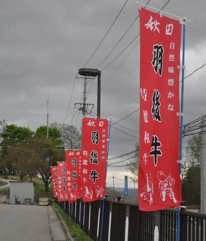 DSC_0062-1.JPG