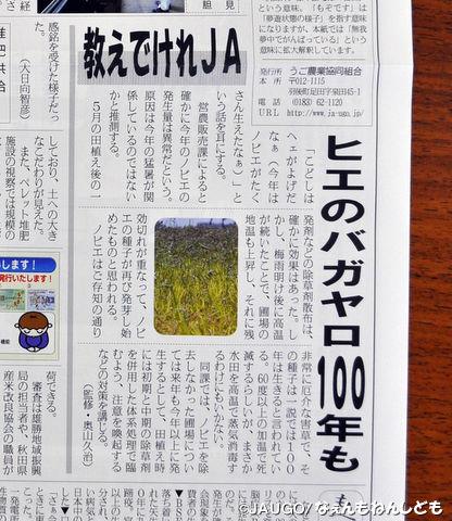 DSC_0207_copy.jpg