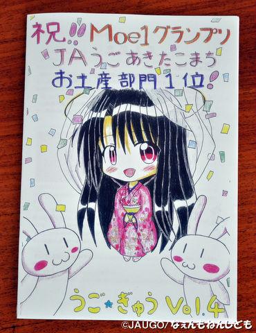 DSC_0330_copy.jpg