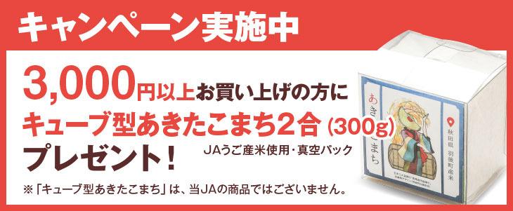 キューブ米2019_cube_rice.jpg