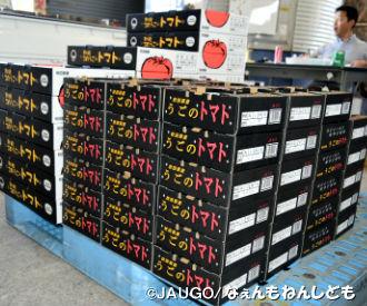 トマト1kg新箱20160815 006.jpg