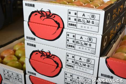トマト1kg新箱20160815 010.jpg
