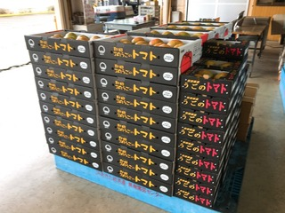 E496E418-5F2B-415A-A96B-6274FD7CE56E.jpeg