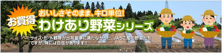 item_wakeari.jpg