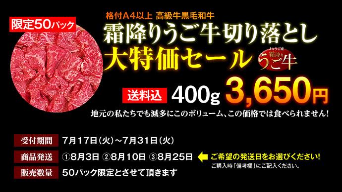 tokubai_2012.jpg