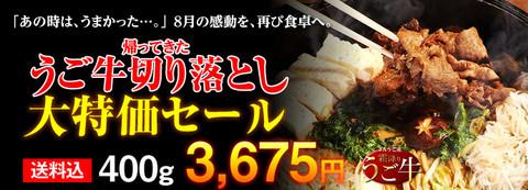 tokubai_2012_2_1.jpg